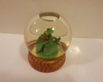 Frog Water Globe with Wood Base