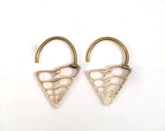 Shell Ear Weights