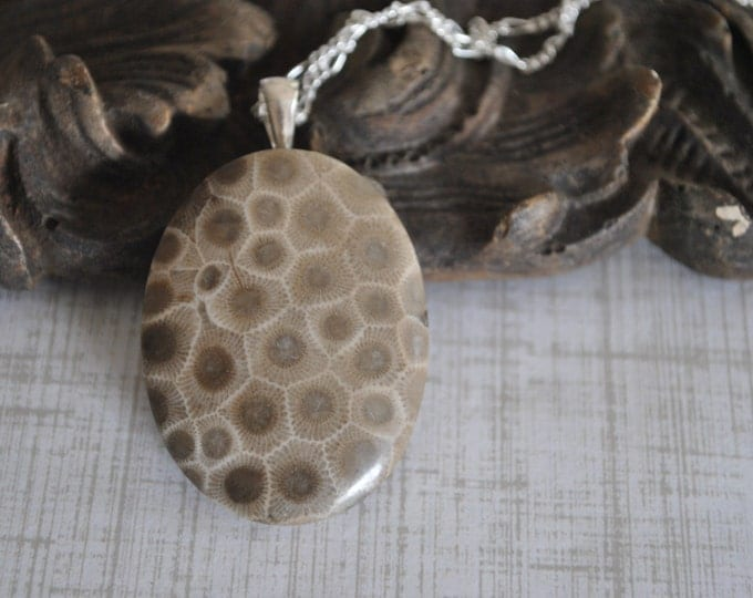 Petoskey Stone Necklace on Sterling Silver chain simple, boho, minimalist