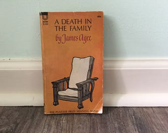 """James Agee """"A Death in The Family"""" paperback book"""