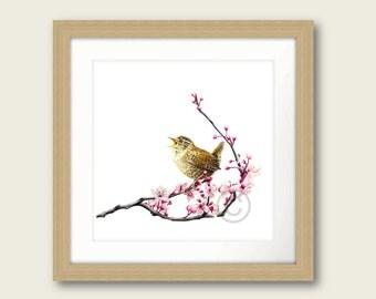 Wren Little Tweets Bird Print Artwork Picture