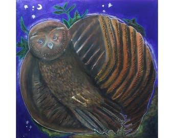 owl in flight art print