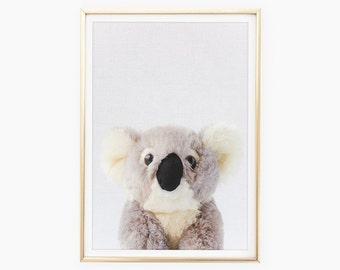 Koala Prints, Zoo Nursery Printable, Australian Animal, Nursery Wall Art, Baby Koala Bear Download, Grey Nursery Decor, Kids Room Photos