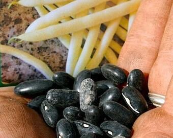 VBSW)~PENCIL POD Black Wax Bean~Seed!!~~~~~Bush Variety!!!