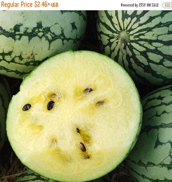 Watermelon seeds Petite YellowYellow Flesh by CaribbeanGarden