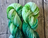 Run, Forrest, Run - Superwash Merino Hand Dyed Yarn - Worsted Weight Yarn Hand Dyed