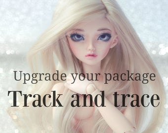Upgrade track and trace