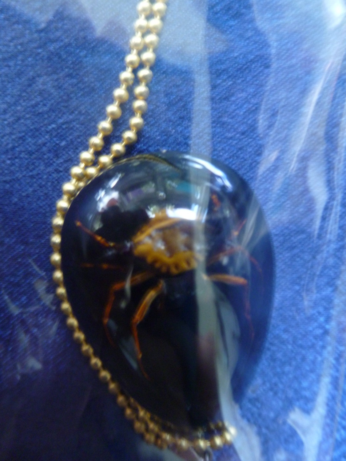 Australian King Spider Real Jewled Spider in Lucite your choice Amber Blue Black or Glow in the Dark and your choice of necklace