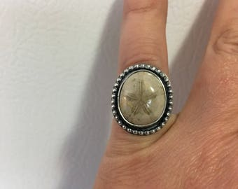 Fossilized Sand Dollar ring in Sterling Silver size 6