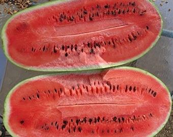 Organic Charleston Gray Watermelon Seeds - 8 Count - Classic Watermelon, Red Fiber less Flesh, Predominant Variation