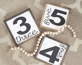 Farmhouse style number wooden mini sign