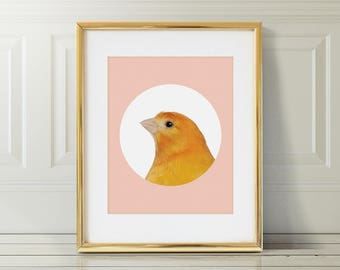 Canary Nursery Art Print | Canary Wall Art | Nursery Printable | Nursery Wall Art | Bird Art Print | Bird Wall Art | Bird Nursery Print |