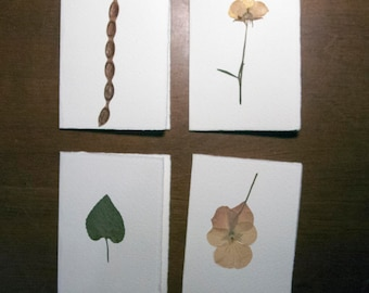 Set of 4 tickets. Card stock with pressed flowers, leaves and dried flowers. Birthday card for various events.