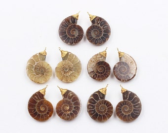 1 Pair Ammonite Fossil Pendants Pairs -- With Wired Gold Head Couple YHA-005