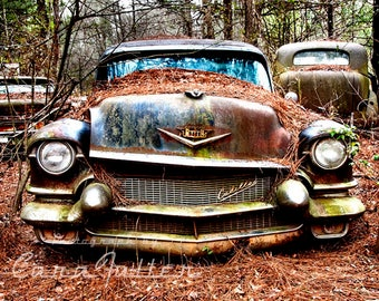 1956 Cadillac Rusty Car in woods Photograph