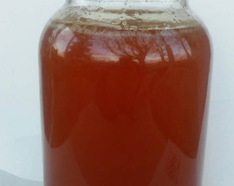 Sale Gallon, 12 lbs raw honey, bulk honey, unfiltered honey, local