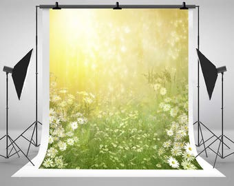 Kate Newborn Baby Photography Backdrops White Sunny Flowers Grass Photo Backgrounds for Children Studio Props CM-6001