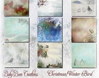 Christmas/Winter Bird Papers