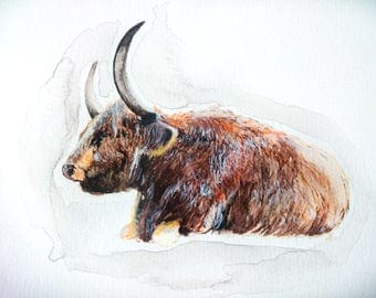 Watercolor Painting, Original art, Highland Cattle, Cows, Farm life, Cattle, Cow, Cow Art