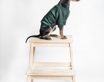 Dog or cat Sweater/ jumper - Dark green -  Handmade pet clothes - Ideal for dogs, puppies and cats - Keep your pets warm and looking awesome