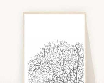 Printable Art, Coral Print, Coral Art, Scandinavian Print, Wall Decor, Grey and White Art, Instant download, Home Decor, Art Digital Print
