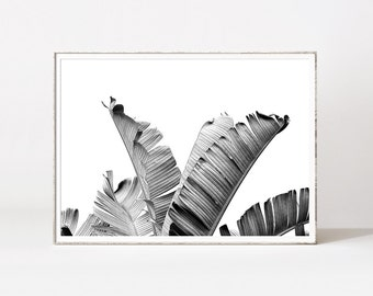 Scandinavian black and white prints, trending black and white prints, modern black and white art, palm leaves, contemporary wall art