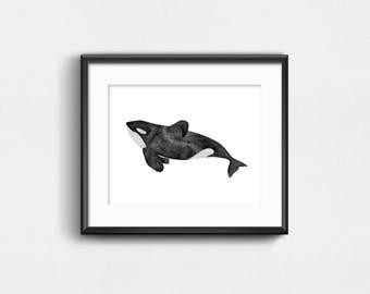 Tilikum Art Print | Watercolor Art | Wall Decor | 10x8