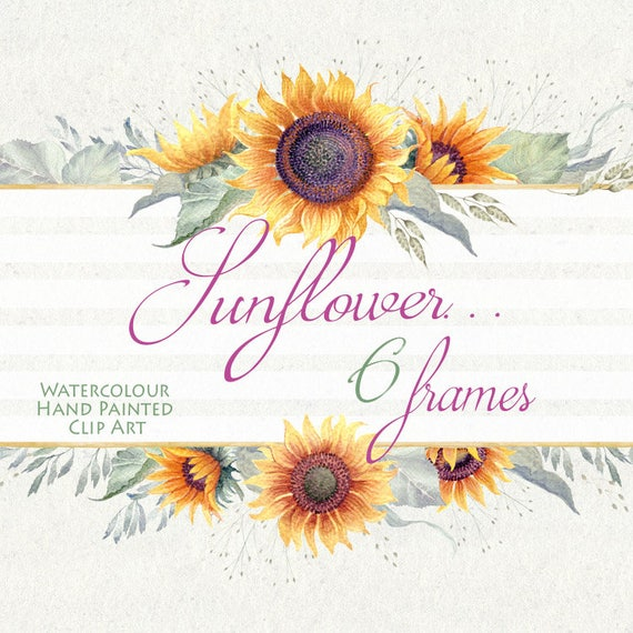 watercolor flower clipart sunflower frames hand painted diy clip art greeting card wedding invitations scrapbooking png file - Sunflower Picture Frames