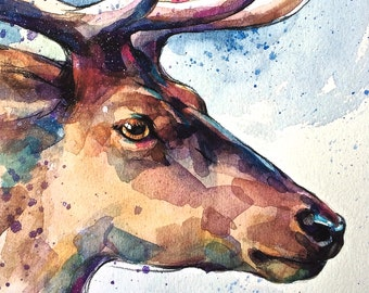 Deer fine art archival print, stag, watercolor, animal art, giclee print, Illustration