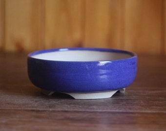 Small blue literati style bonsai pot or succulent planter