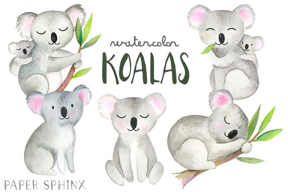 Koala Art And Design : Watercolor koalas clipart koala bear family illustrated