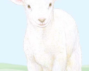 Lamb - Birthday Card