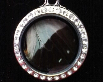 Black and White Butterfly Wing Necklace