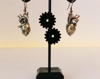 Heart anatomy earrings bronze