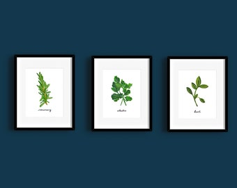 Herb Paintings Trio - Printable