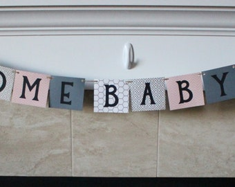 Welcome Baby Girl Banner / Pink & Gray