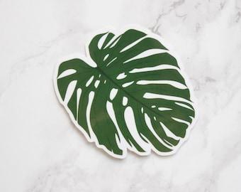 Monstera Palm Leaf Sticker