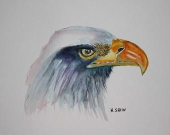 Bald Eagle Watercolor Art Print, Bird Watercolor Art Print, Eagle Home Décor, American Bald Eagle Wall Art, Watercolor Print, Signed Print