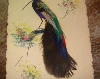 Vintage Bird Card made with feathers