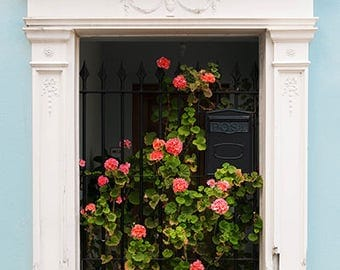 London House Flower Photos, London Flower Wall Art, London Home Photography, Romantic London Photography, London Style Photo Prints