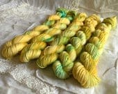BZZZap on Mini Nest Mini Skein Sock Yarn