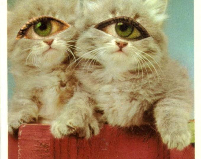 Big Eye Kitty Cat Collage Art, Kitschy Cat Freak Artwork