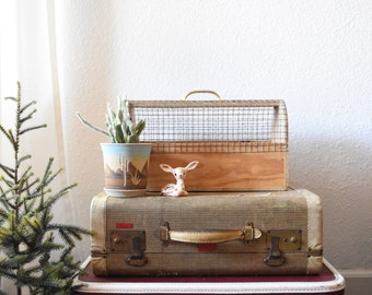 vintage wooden wire crate box / pet carry cage / farmhouse