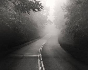 black and white photography, landscape photography, road photography, roads, foggy road, moody photography, appalachia, tree photography