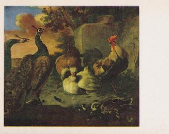"Melchior Hondecoeter ""Poultry"" Print, Postcard -- 1983"