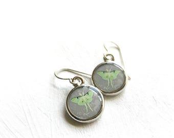 Silver Luna Moth Art Earrings, Luna Earrings, Moon Moth Earrings, Mint Green and Gray Jewelry