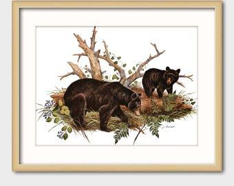 Bear Art Print w/Mat -- Vintage Matted Animal Artwork