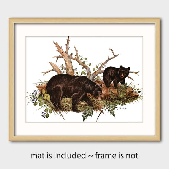 Bear Art Print W Mat Vintage Matted Animal Artwork