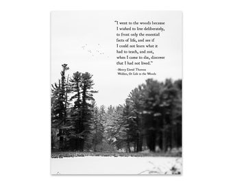 Henry David Thoreau Quote, I Went to the Woods, Wilderness Quote, Nature Lover Print, Inspirational Quote, Adventure Quote, Fine Art Print