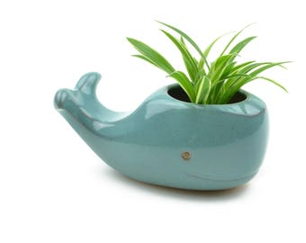 Cute whale ceramic planter - turquoise blue - made in Brazil